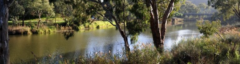 STAYING SAFE ON THE BARWON THROUGH GEELONG THIS SUMMER